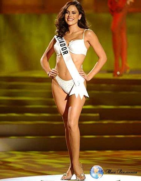 мисс вселенная 2015 участницы фото в платьях